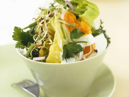 Bunter Salat mit Kräutern und Ei