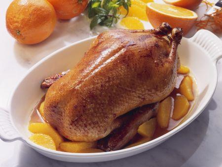 Ente mit Orangen (Canard a l'orange)