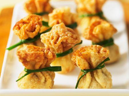 Fritterite Wan Tans