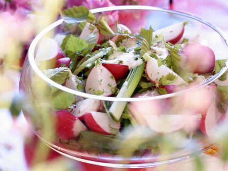 Frühlingshafter Salat mit Radieschen und jungen Birkenblättern