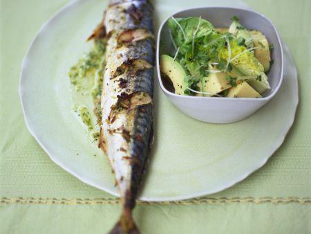 Gebackene Makrele mit Avocado-Salat