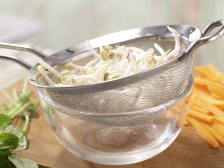 Gefüllte Reispapier-Röllchen: Zubereitungsschritt 2