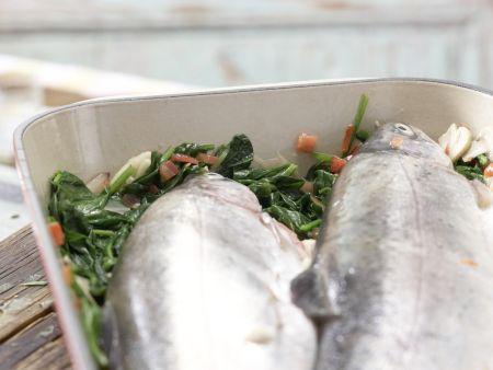 Gefüllte Lachsforelle: Zubereitungsschritt 10
