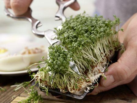 Gefüllte Wasabi-Eier: Zubereitungsschritt 7