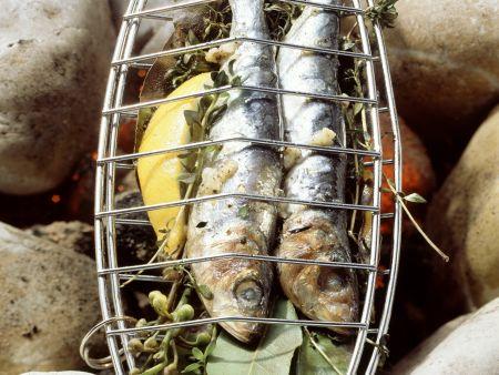 Rezept: Gegrillte Sardinen