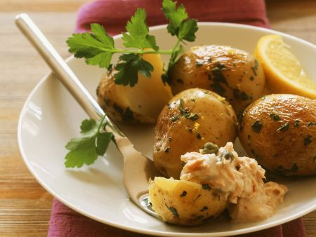 Junge Kartoffeln mit Thunfischsoße