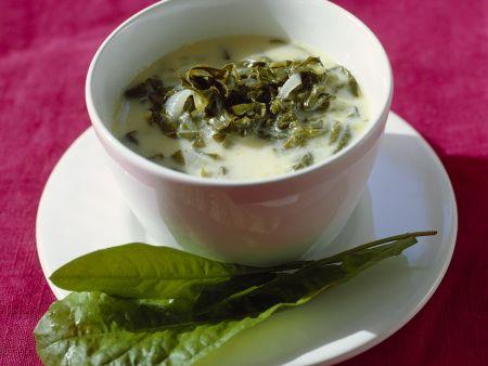 Kalte Suppe vom Sauerampfer