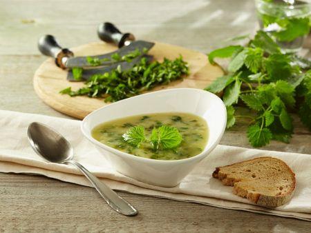 Kartoffel-Brennnessel-Suppe