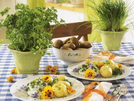 Rezept: Kartoffeln mit Kräuterquark und essbaren Blüten