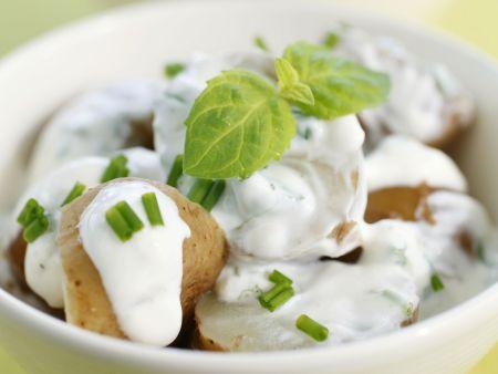Kartoffelsalat mit Joghurtvinaigrette und Minze