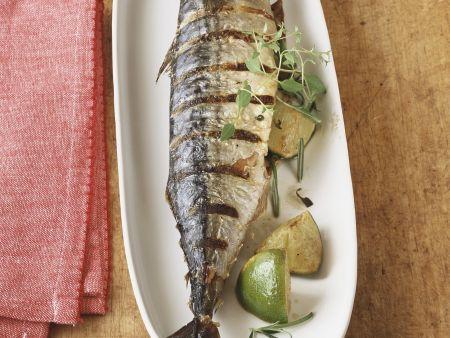 Rezept: Makrele vom Grill