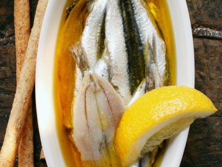 Marinierte Sardinen mit Zitrone