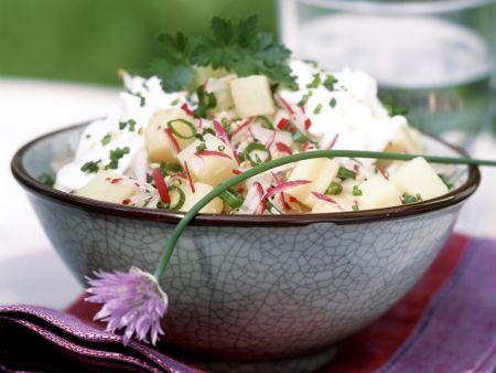 Radieschen-Kartoffel-Salat mit Topfen