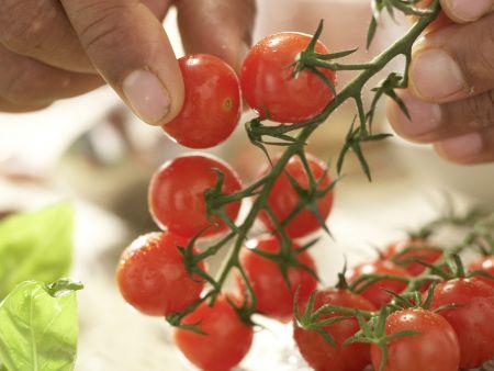 Risotto mit Tomaten: Zubereitungsschritt 7