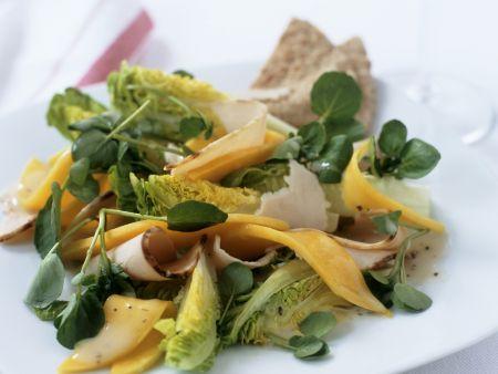 Rezept: Salat aus Brunnenkresse, Mango und gekochter Putenbrust