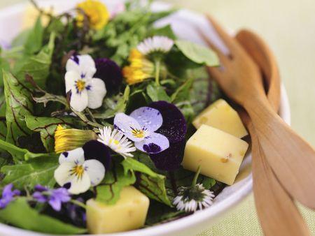 Salat mit Frühlingsblüten und Käse