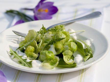 Salat mit Rosenkohl, Bärlauch, Löwenzahn und Joghurt