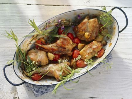 Kochbuch für Kaninchen-Rezepte