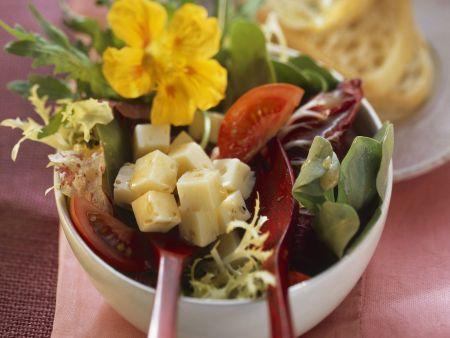 Sommerlicher Salat mit Käse