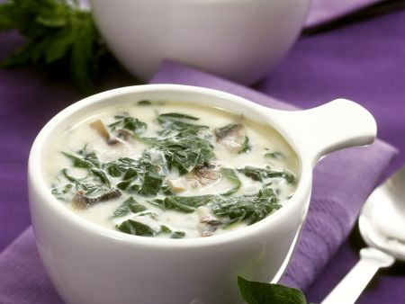 Spinat-Champignon-Suppe