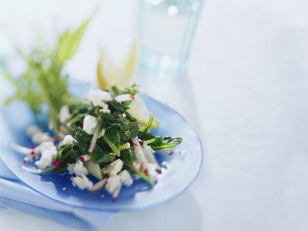 Spinat-Radieschen-Salat mit Schafskäse