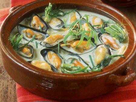 Suppe mit Miesmuscheln, Estragon und Anislikör (Pastis)