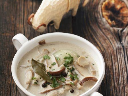 Suppe mit Steinpilzen