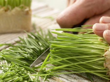 Trauben-Sellerie-Saft: Zubereitungsschritt 3