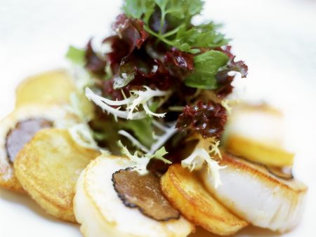 Trüffel-Jakobsmuscheln mit Maistalern und Salat als Vorspeise