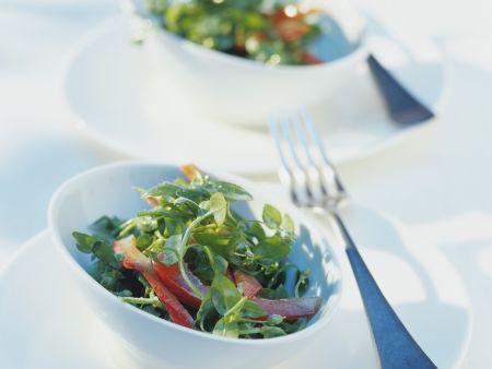 Vogelmiere-Paprika-Salat