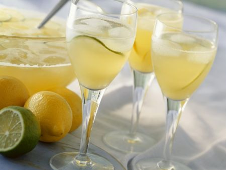 Rezept: Zitronen-Limetten-Bowle