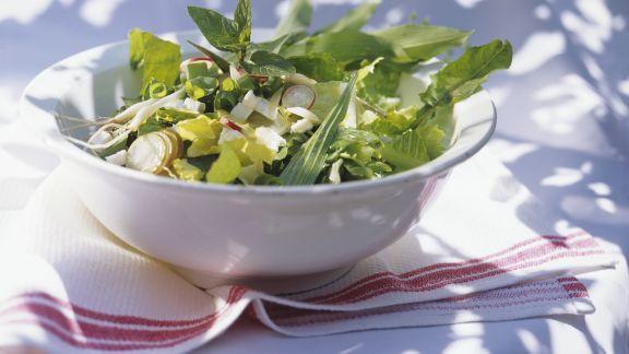 Rezept: Blattsalat mit Radieschen und Kräutern