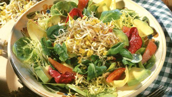 Rezept: Bunter Blattsalat mit Avocado, Tomate und Sprossen
