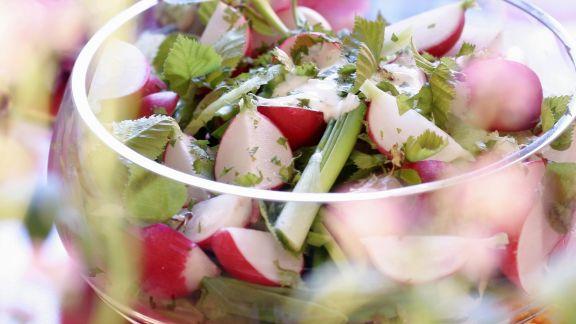 Rezept: Frühlingshafter Salat mit Radieschen und jungen Birkenblättern