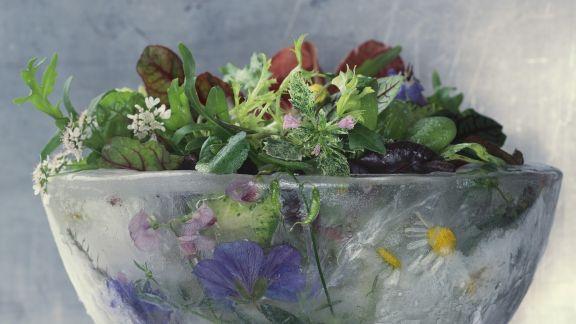 Rezept: Gemischter Salat mit Essblüten und Wildkräutern