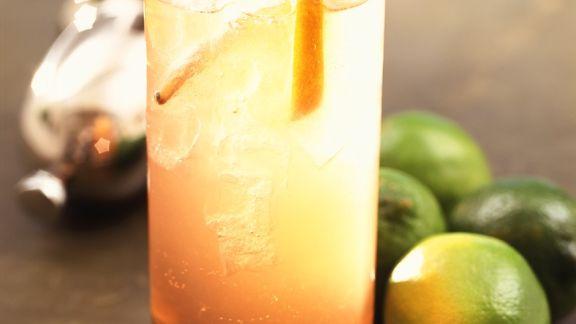 Rezept: Gin-Orangen-Drink
