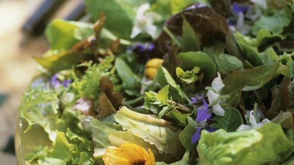 Rezept: Grüner Salat mit essbaren Blüten