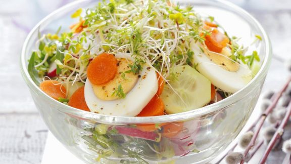 Rezept: Gurkensalat mit Karotten, Kresse und Eiern
