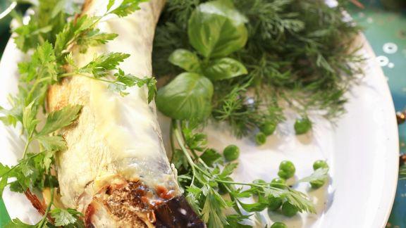 Rezept: Hecht mit Kräuter-Sahne-Soße