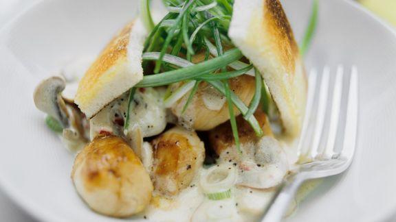 Rezept: Jakobsmuscheln mit Pilz-Sahnesauce