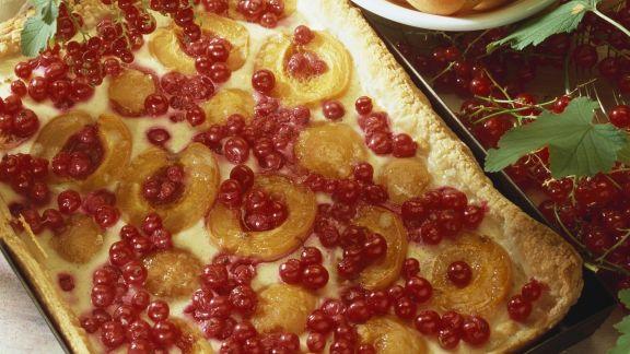 Rezept: Johannisbeer-Aprikosen-Tarte