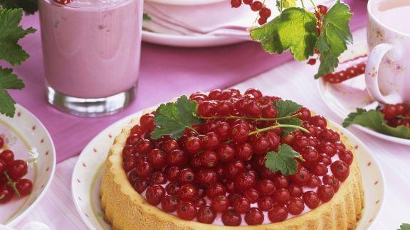 Rezept: Johannisbeer-Quark-Kuchen