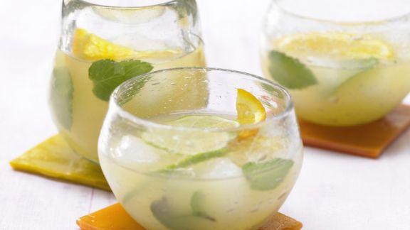 Kochbuch für Limonaden-Rezepte