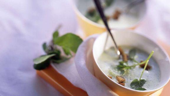 Rezept: Kressesuppe