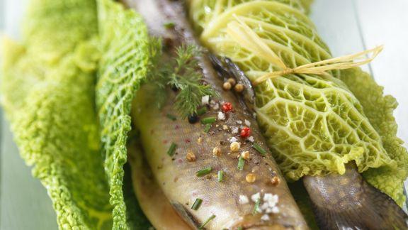 Rezept: Lachsforelle in Wirsinghülle