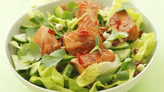 Rezept: Marinierter Lachs auf Salat mit Gurke, Koriander und Chili