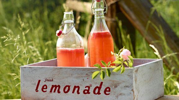 Rezept: Melonenlimonade