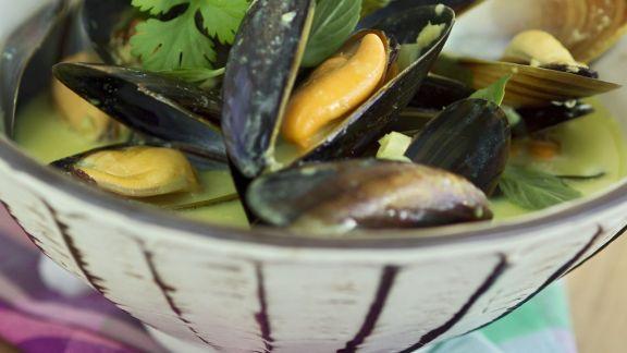 Rezept: Miesmuscheln in Weißweinsud mit Kräutern