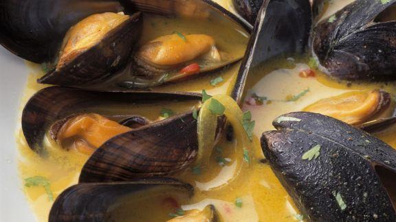 Rezept: Miesmuscheln nach Karibik-Art