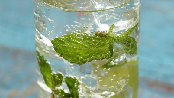 Rezept: Minz-Cocktail (Mojito)